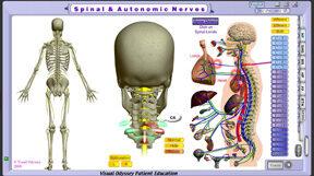 np_spinal_autonomic_cer_sublux_thumb
