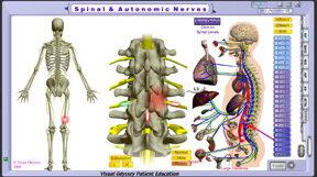 np_spinal_autonomic_lumbar_sublux_thumb